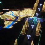 木曽三川公園のイルミネーションの料金と混雑、駐車場は無料!