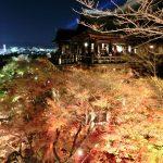 清水寺の紅葉の時期や見ごろ、混雑回避は夜20時以降!