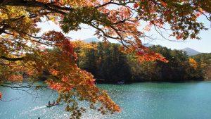 五色沼の紅葉の時期や見ごろ、混雑状況のまとめ